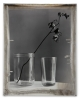 Jeff Cowen, Nature Morte 10, 65 x 81 cm, Silver Print, 2010, Edition of 6